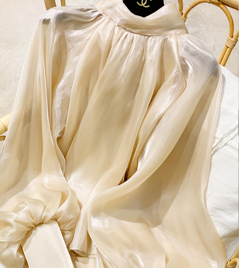 Sweet Organza Blouse